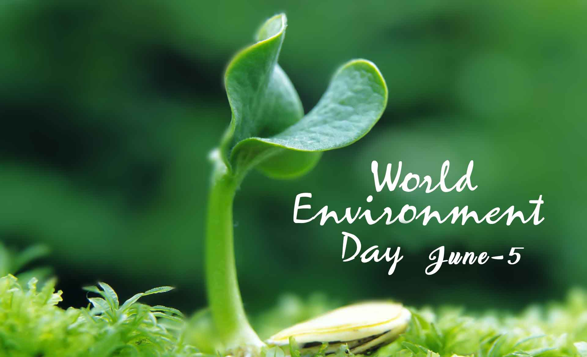 world environment day education article all educational articles about personality development career guidance leadership skills and more in com