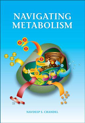 navigating-metabolism