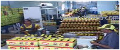Industrial Visit Kamdhenu Pickles & Spices Pvt. Ltd. & Shivshakti Foods Pvt Ltd.