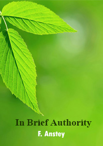 IN Brief Authority