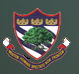Top Institute Boys' High School & College details in Edubilla.com