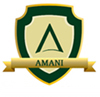 AMANI GROUP OF INSTITUTIONS