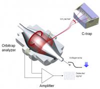 Orbitrap Mass Spectrometer