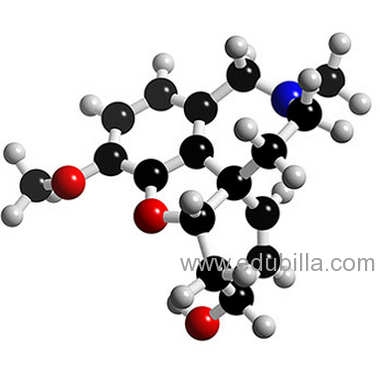 Exelon patch missed dose of prednisone