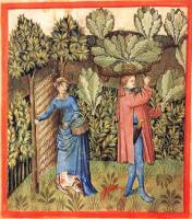 Wattle and Daub