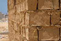 Dried Brick