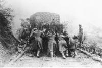 Log-laid Road