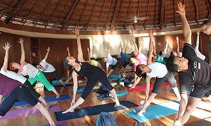 Db/dd/no-plan-to-make-yoga-mandatory.jpg