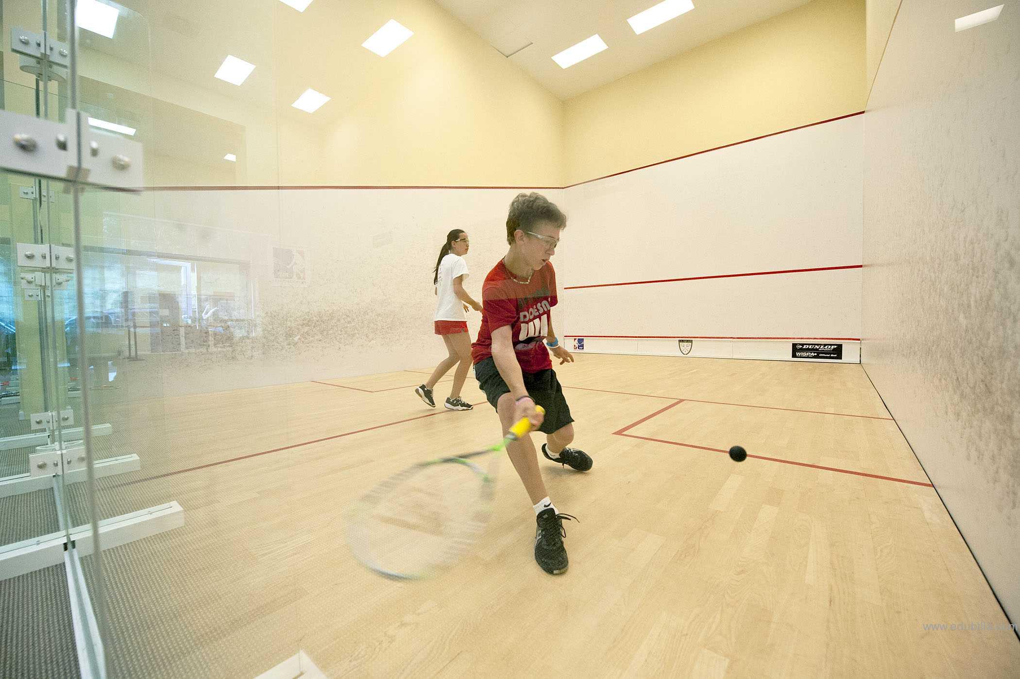squashsport7.jpg