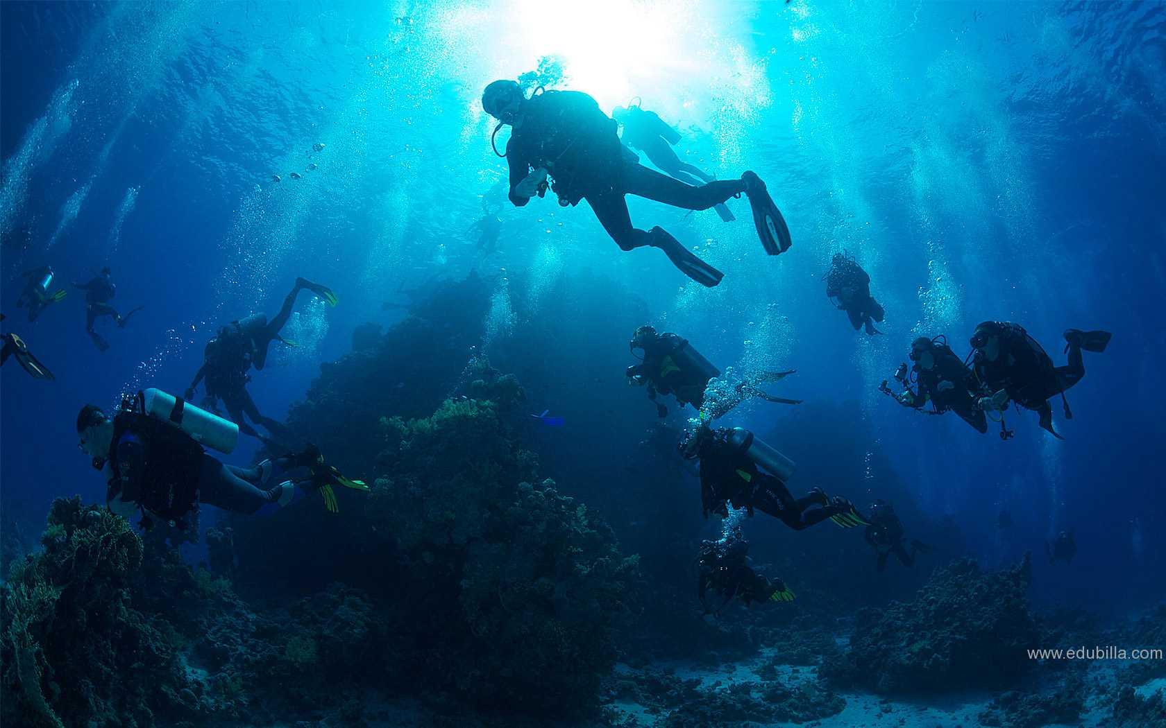 underwaterorienteering1.jpg