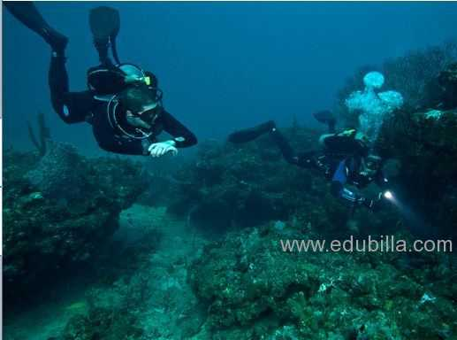 underwaterorienteering4.jpg
