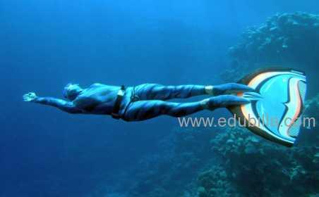 underwaterorienteering2.jpg